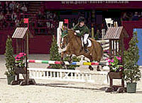 Equitation Cheval Poney